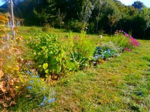 Jardin de la Motte été 2016